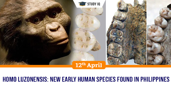 New Evidence For A New Prehistoric Human Species