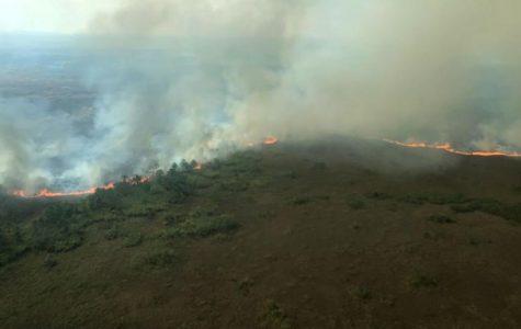The Amazon Rain Forest Is Still On Fire